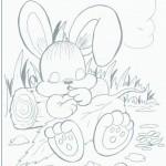 planse_de_colorat_animale_iepure-4