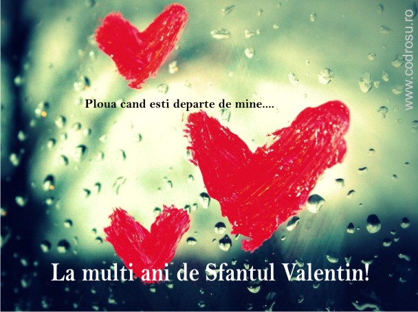felicitari de sf valentin_poze_07